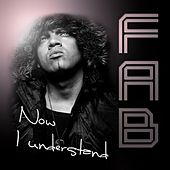 Now I Understand by Fab