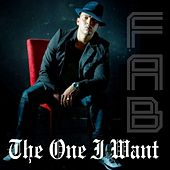 The One I Want by Fab
