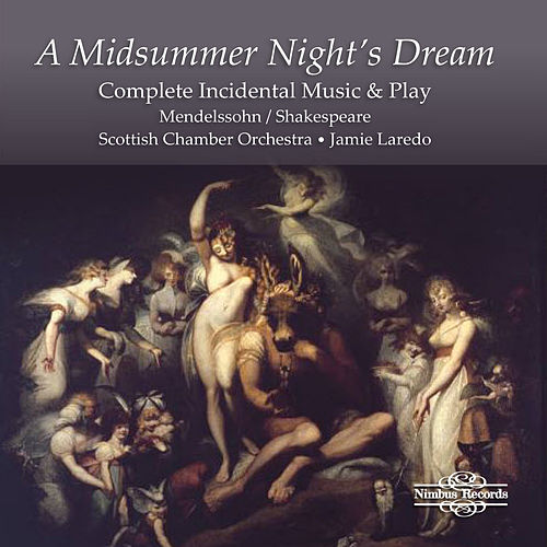 A Midsummer Night's Dream by Judith Howarth
