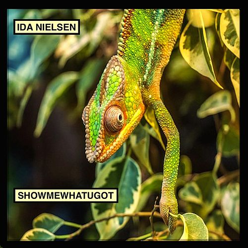 Play & Download Showmewhatugot by Ida Nielsen | Napster