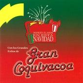 Play & Download Despierta el Sabor en Esta Navidad by Gran Coquivacoa | Napster