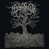 Play & Download Jumalten Aika  by MOONSORROW | Napster