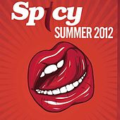 Spicy Summer 2012 by Various Artists