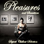 Pleasures and Sensations (Superb Chillout Selection) by Various Artists