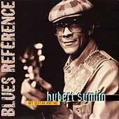 My Guitar And Me (1975) by Hubert Sumlin