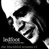 The Blackbird Sessions V1 by Tim Scott
