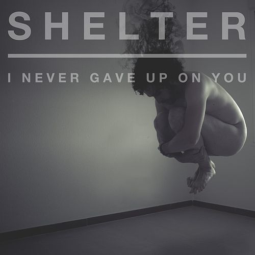 I Never Gave Up on You by Shelter