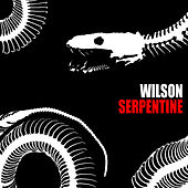 Play & Download Serpentine by Wilson | Napster