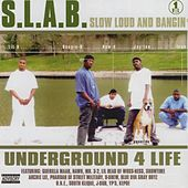 Slow, Loud and Bangin', Vol. 1 by Trae