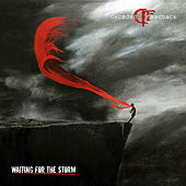 Play & Download Waiting For The Storm by Decoded Feedback | Napster