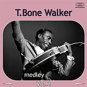 Play & Download T-Bone Walker Medley 2: I Got the Blues Again / Wanderin' Heart / News for My Baby / When the Sun Goes Down / Party Girl / Hard Way / Blue Mood / My Baby Is Now On My Mind /  Vida Lee by T-Bone Walker | Napster