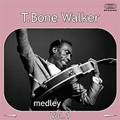Play & Download T-Bone Walker Medley 1: Travelin' Blues / I Miss You Baby /  Cold, Cold Feeling / Welcome Blues / Bye Bye Baby / I Got the Blues / You Don't Love Me / Here in the Dark by T-Bone Walker | Napster