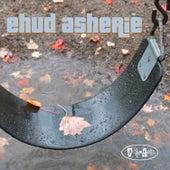 Swing Set by Ehud Asherie