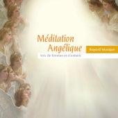Méditation angélique: Voix de femmes et d'enfants by Various Artists
