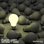 Not What It Seems by Placid Larry