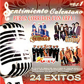 Play & Download Puros Corridos Con Arpa, Vol. 1 by Various Artists | Napster