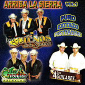 Arriba la Sierra, Vol. 1 by Various Artists