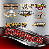 Musica De Corridos by Various Artists
