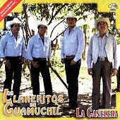 La Canelera by Los Llaneritos De Guamuchil