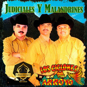 Judiciales y Malandrines by Los Ciclones del Arroyo