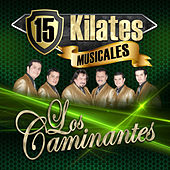 Play & Download 15 Kilates Musicales by Los Caminantes | Napster