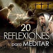 Play & Download 20 Reflexiones Para Meditar by Los Llayras | Napster