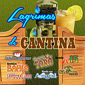 Lagrimas De Cantina by Various Artists