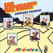 Play & Download 10 Corridos Pesados by Los Huracanes Del Norte | Napster