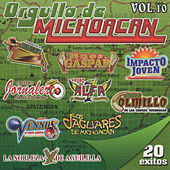 Play & Download Orgullo De Michoacan, Vol. 10 by Various Artists | Napster