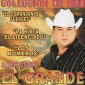Play & Download Coleccion De Oro by Adan Cuen
