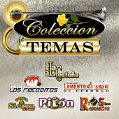 Coleccion De Temas by Various Artists