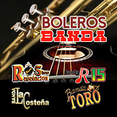 Play & Download Boleros Banda by Various Artists | Napster