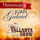 Play & Download Homenaje a Juan Gabriel by Banda Vallarta Show | Napster