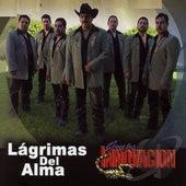 Play & Download Lagrimas Del Alma by Grupo Innovacion | Napster