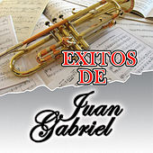 Play & Download Exitos de Juan Gabriel by Juan Gabriel | Napster