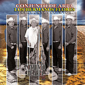 Play & Download Conjunto De Arpa by Los Hermanos Flores | Napster