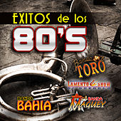 Play & Download Exitos de los 80's by Various Artists | Napster