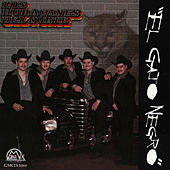 Play & Download El Gato Negro by Los Huracanes Del Norte | Napster