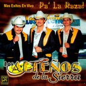 Play & Download Mas Exitos En Vivo Pa' La Raza by Los Altenos De La Sierra (1) | Napster