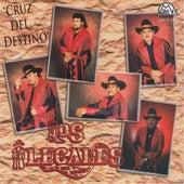 Play & Download Cruz Del Destino by Los Ilegales del Bravo | Napster