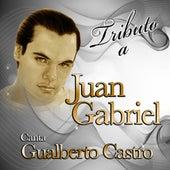 Tributo A Juan Gabriel by Gualberto Castro