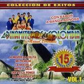 15 Grandes Exitos, Vol.1 by Los Dinamiteros De Colombia