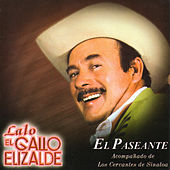 El Paseante by Lalo El Gallo Elizalde