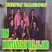 Play & Download Exitos Famosos by Los Montaneses Del Alamo | Napster