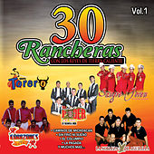 30 Rancheras Con los Reyes de Tierra Caliente, Vol. 1 by Various Artists