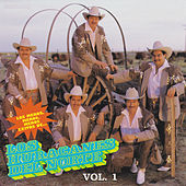 Play & Download Los Meros, Meros, Meros Exitos De...Vol.1 by Los Huracanes Del Norte | Napster