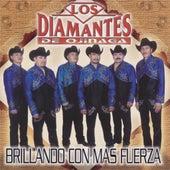 Play & Download Brillando Con Mas Fuerza by Los Diamantes De Ojinaga | Napster