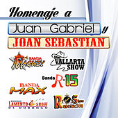 Play & Download Homaje A Juan Gabriel y Joan Sebastian by Various Artists | Napster
