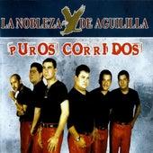 Play & Download Puros Corridos by La Nobleza De Aguililla | Napster