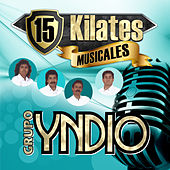 15 Kilates Musicales by Grupo Yndio